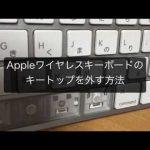 Appleワイヤレスキーボードにコーヒーをこぼしたので分解・掃除・カバーを付ける・外した