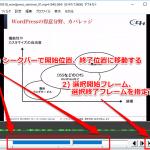 AviUtlで動画を読み込み後、特定の範囲だけ切り出してmp4で保存する手順